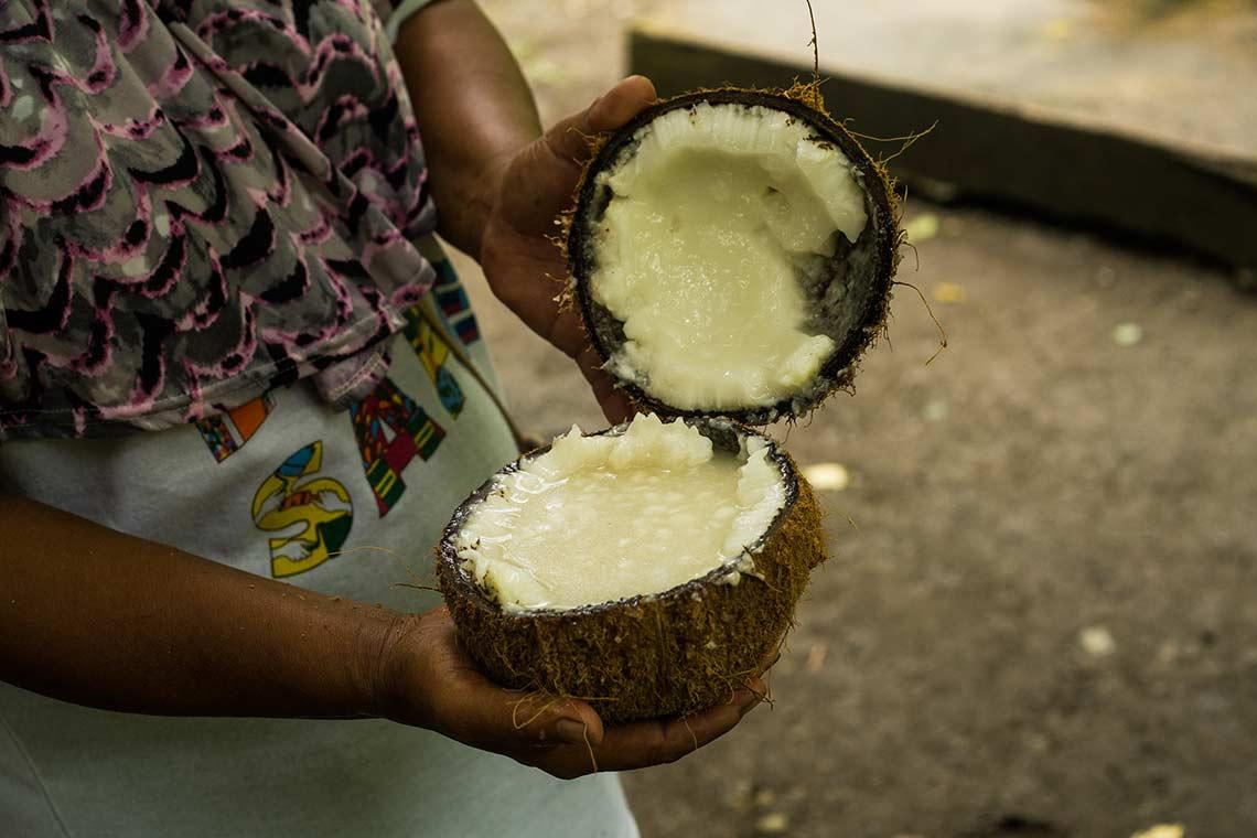 Kokosfleisch neben Kokoswasser ein wichtiges Kokosprodukt bspw für Kokosoelproduktion