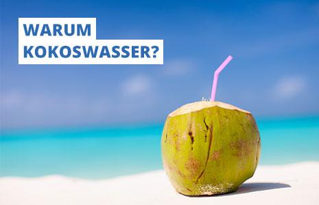 Mehr über Kokoswasser und unsere Idee erfahren